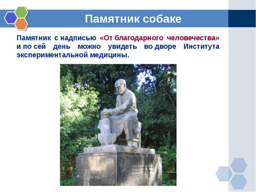 Памятник снадписью «Отблагодарного человечества» ипосей день можно увидет...