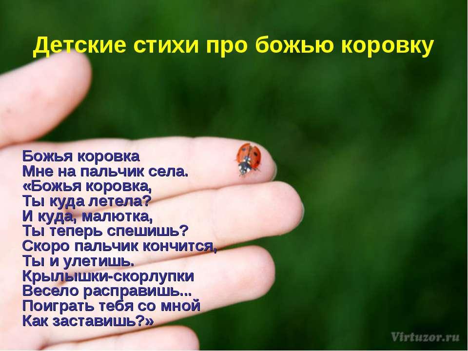 Детские стихи про божью коровку Божья коровка Мне на пальчик села. «Божья кор...
