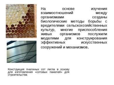 На основе изучения взаимоотношений между организмами созданы биологические ме...