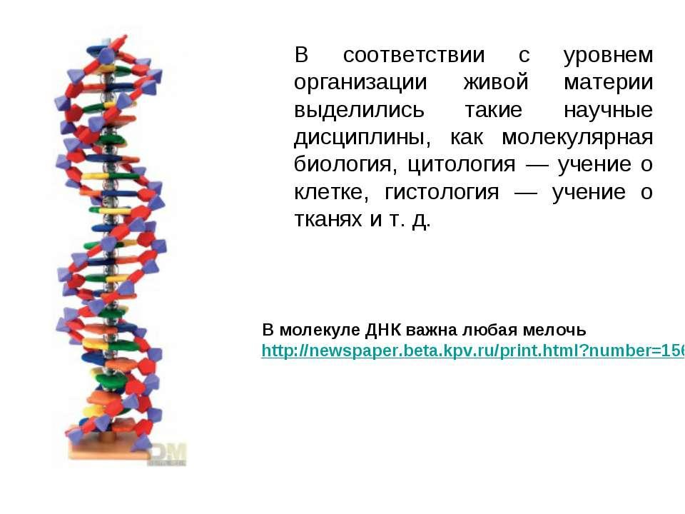 В соответствии с уровнем организации живой материи выделились такие научные д...