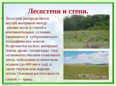 Лесостепи и степи. Лесостепь распределяется внутри материков между зонами ле...