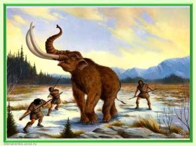 Географическая зональность впервые проявляется 225 - 223 млн.лет назад. В рез...