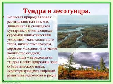 Тундра и лесотундра. Безлесная природная зона с растительностью из мхов, лиша...