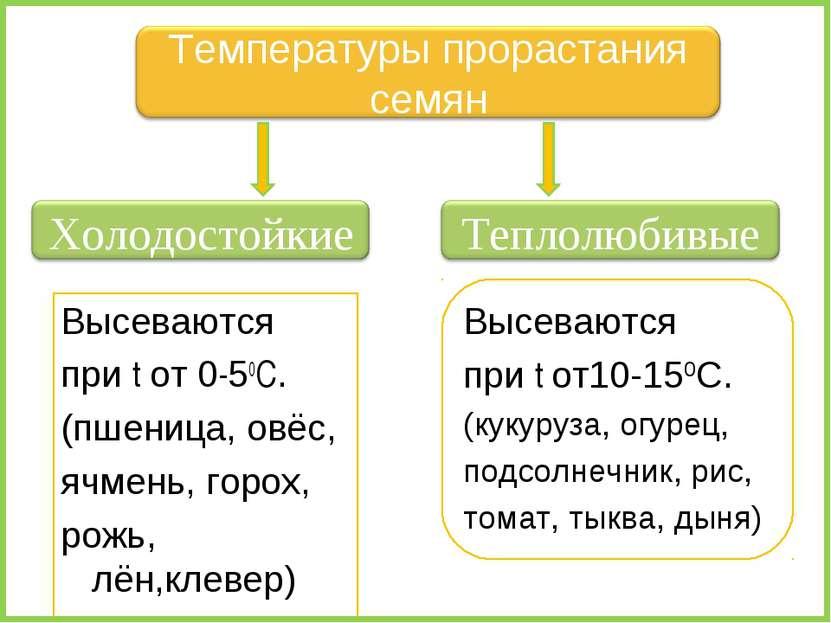 Высеваются при t от 0-50C. (пшеница, овёс, ячмень, горох, рожь, лён,клевер) В...
