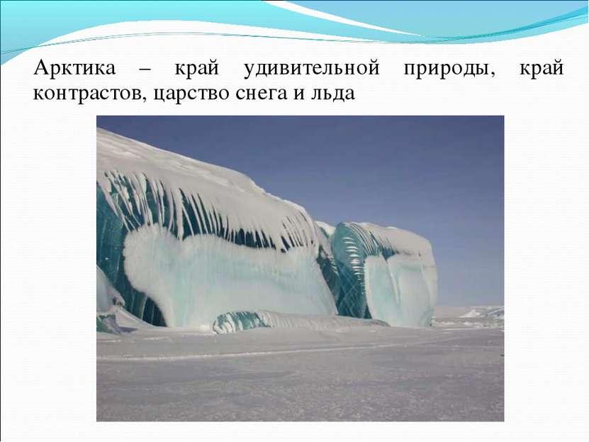 Арктика – край удивительной природы, край контрастов, царство снега и льда