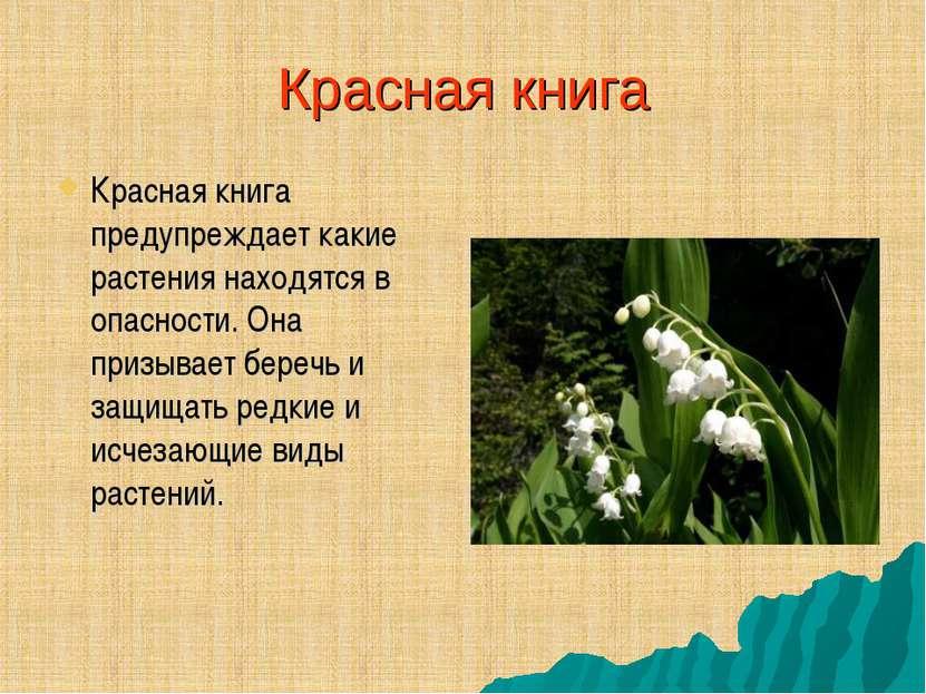 Красная книга Красная книга предупреждает какие растения находятся в опасност...