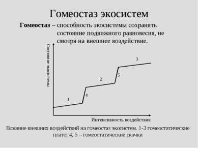 Гомеостаз экосистем Гомеостаз – способность экосистемы сохранять состояние по...