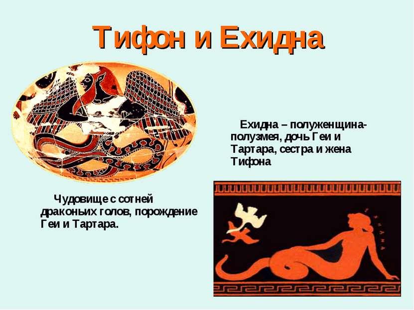 Тифон и Ехидна Чудовище с сотней драконьих голов, порождение Геи и Тартара. Е...