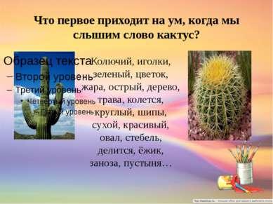 Что первое приходит на ум, когда мы слышим слово кактус? Колючий, иголки, зел...