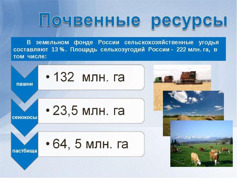 В земельном фонде России сельскохозяйственные угодья составляют 13 %. Площадь...