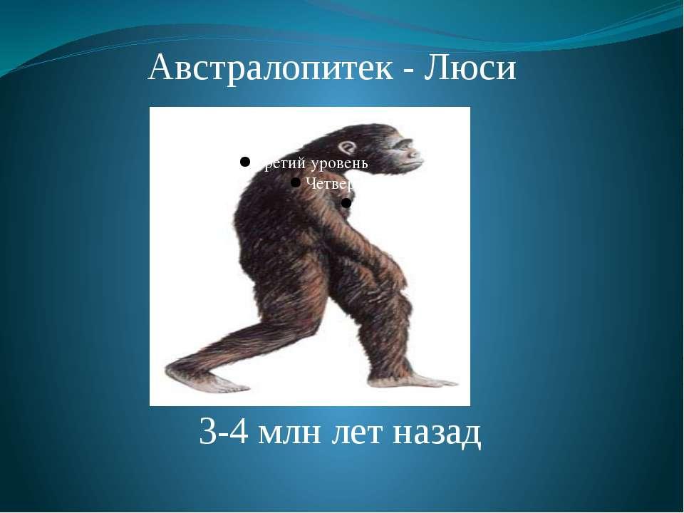 Австралопитек - Люси 3-4 млн лет назад Африканский австралопитек. 3-4 млн лет...