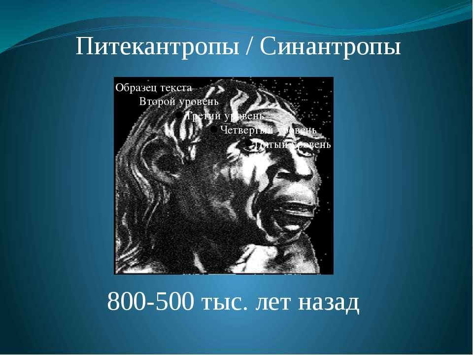 Питекантропы / Синантропы 800-500 тыс. лет назад Питекантропы и синантропы. О...