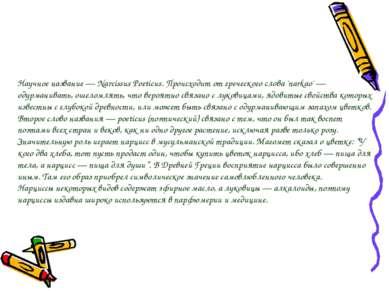 Научное название — Narcissus Poeticus. Происходит от греческого слова 'narkao...