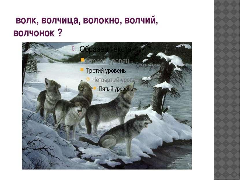 волк, волчица, волокно, волчий, волчонок ?