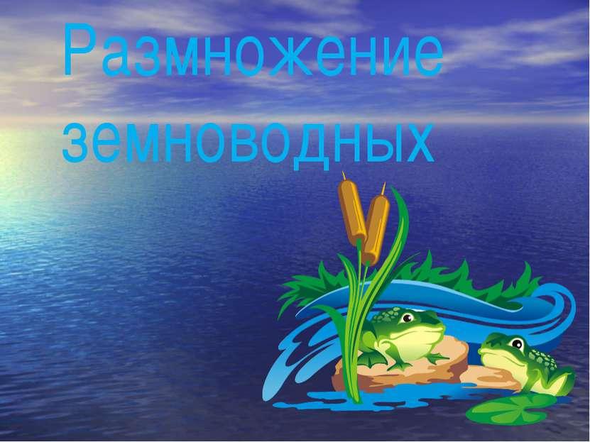 Размножение земноводных