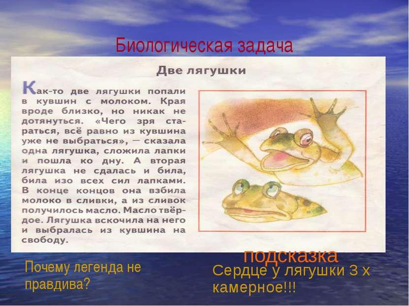 Биологическая задача Почему легенда не правдива? Сердце у лягушки 3 х камерно...