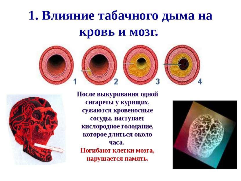 1. Влияние табачного дыма на кровь и мозг. После выкуривания одной сигареты у...