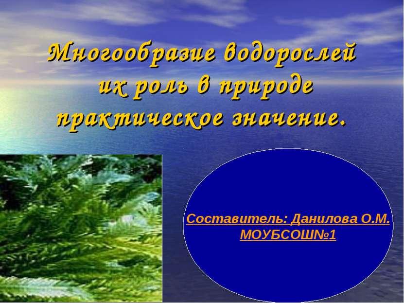 Многообразие водорослей их роль в природе практическое значение. Составитель:...