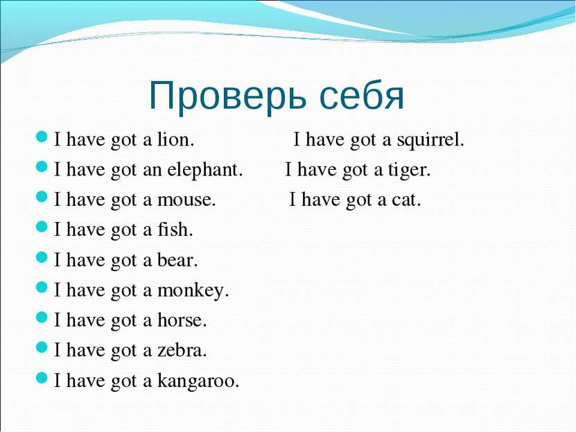 Проверь себя I have got a lion. I have got a squirrel. I have got an elephant...