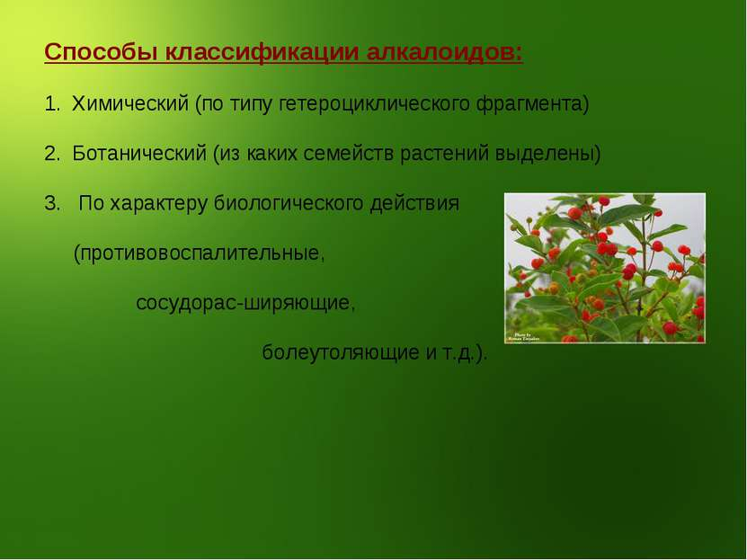 Способы классификации алкалоидов: Химический (по типу гетероциклического фраг...