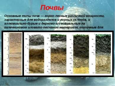 Почвы Основные типы почв — горно-лесные различной мощности, характерные для в...