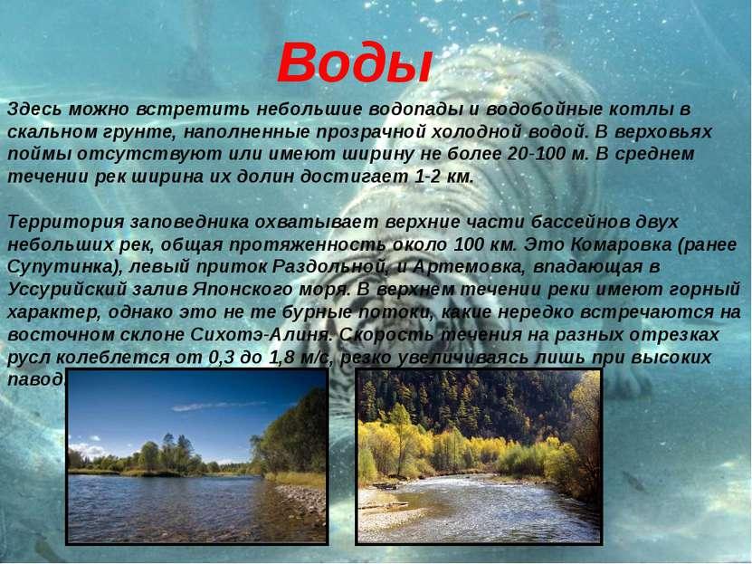 Здесь можно встретить небольшие водопады и водобойные котлы в скальном грунте...