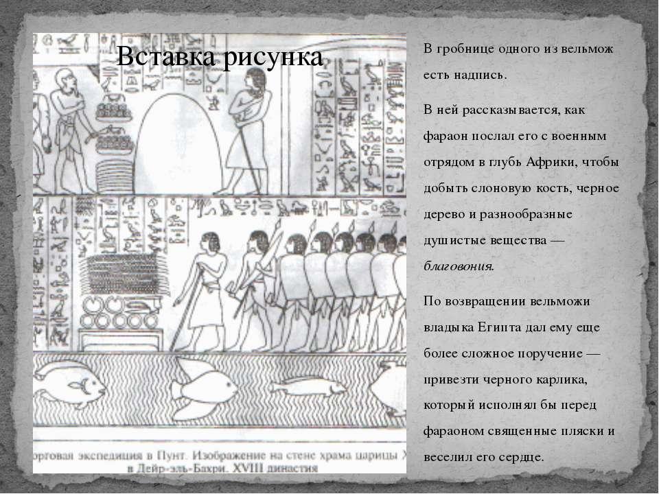 В гробнице одного из вельмож есть надпись. В ней рассказывается, как фараон п...