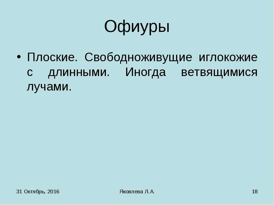 * Яковлева Л.А. * Офиуры Плоские. Свободноживущие иглокожие с длинными. Иногд...