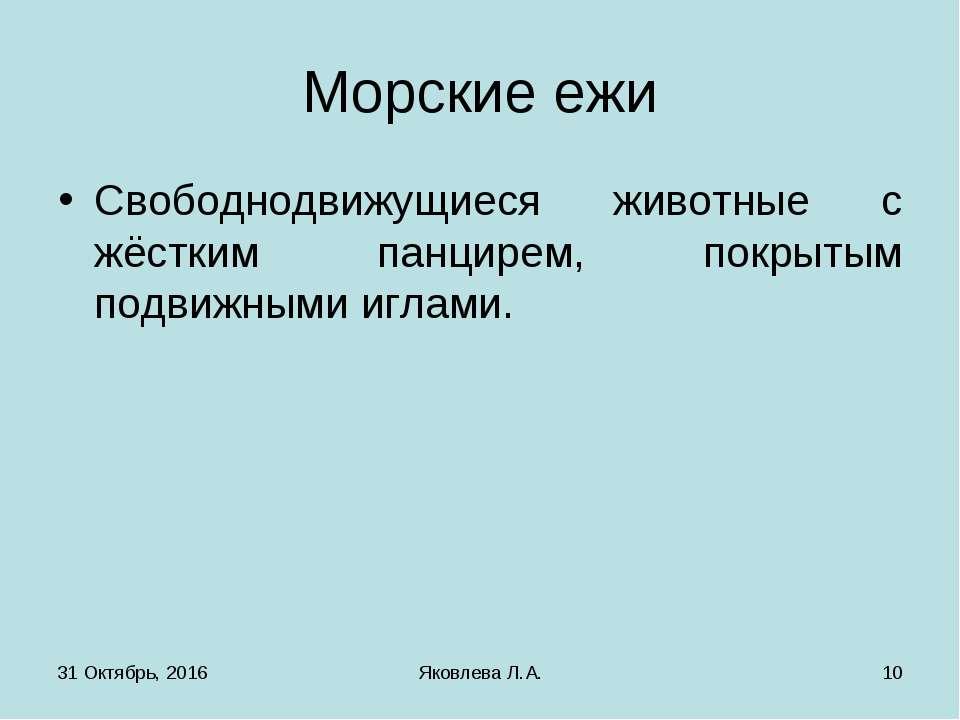 * Яковлева Л.А. * Морские ежи Свободнодвижущиеся животные с жёстким панцирем,...