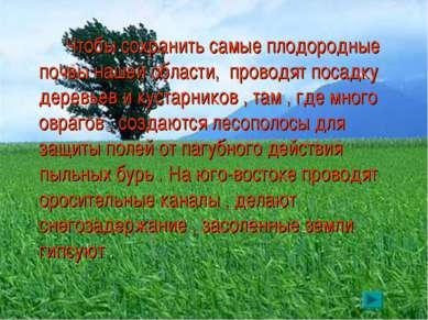 Чтобы сохранить самые плодородные почвы нашей области, проводят посадку дерев...
