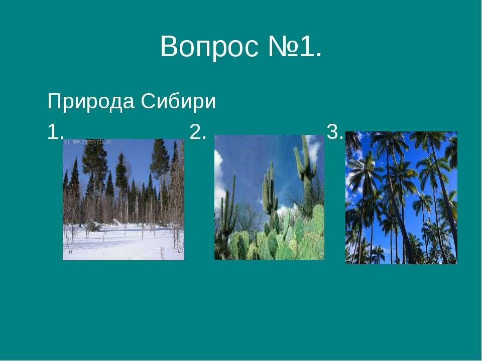Вопрос №1. Природа Сибири 1. 2. 3.