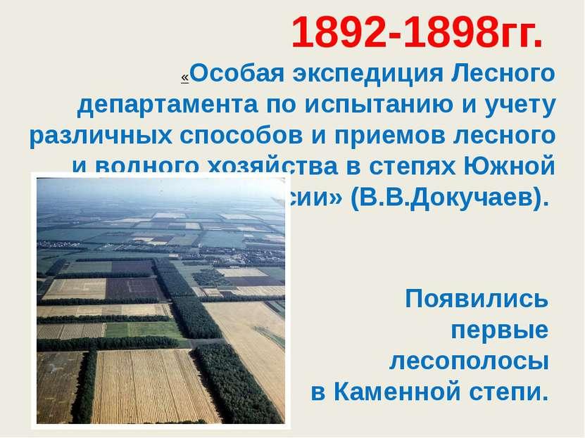 1892-1898гг. «Особая экспедиция Лесного департаментапо испытанию и учету раз...