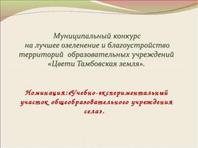 Номинация:«Учебно-экспериментальный участок общеобразовательного учреждения с...