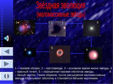 1 2 3 4 5 6 1 – газовое облако, 2 – протозвезда, 3 – основное время жизни зве...