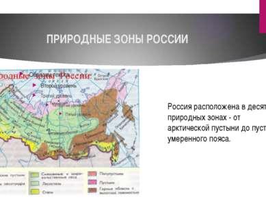 ПРИРОДНЫЕ ЗОНЫ РОССИИ Россия расположена в десяти природных зонах - от арктич...