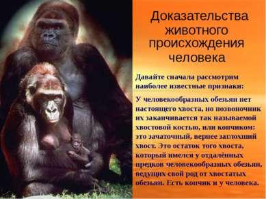 Доказательства животного происхождения человека Давайте сначала рассмотрим на...