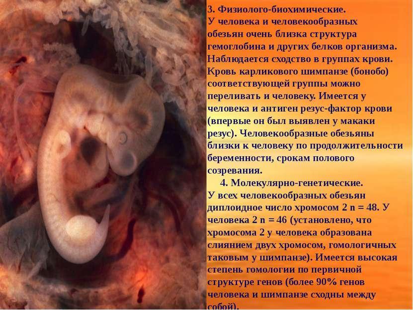 3. Физиолого-биохимические. У человека и человекообразных обезьяночень близк...