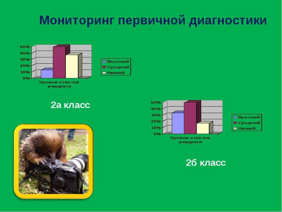 Мониторинг первичной диагностики 2а класс 2б класс