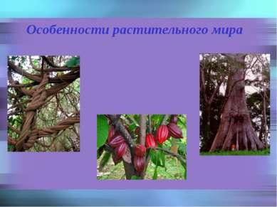 Особенности растительного мира