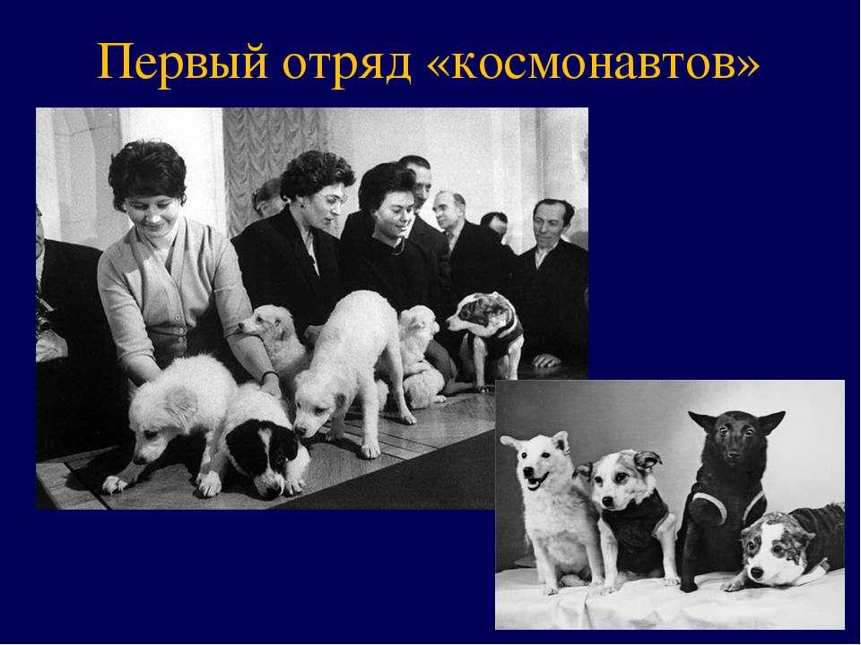Первый отряд «космонавтов»