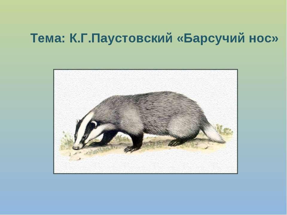 Тема: К.Г.Паустовский «Барсучий нос»