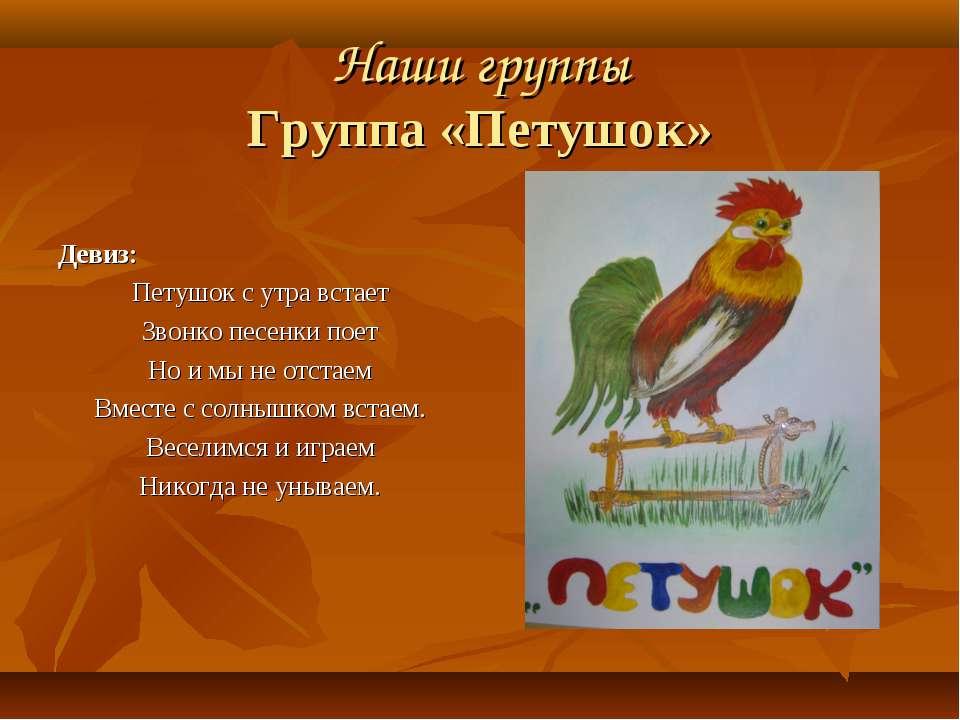 Наши группы Группа «Петушок» Девиз: Петушок с утра встает Звонко песенки поет...