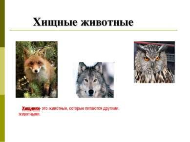 Хищные животные Хищники- это животные, которые питаются другими животными.