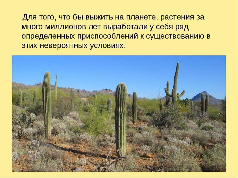 Для того, что бы выжить на планете, растения за много миллионов лет выработал...