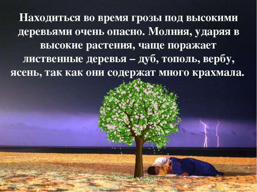 Находиться во время грозы под высокими деревьями очень опасно. Молния, ударяя...