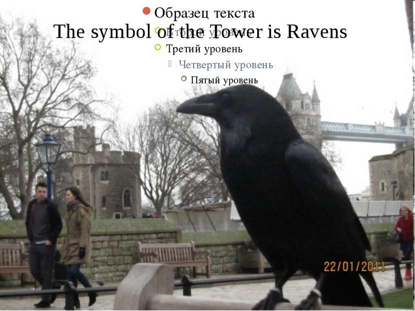 The symbol of the Tower is Ravens