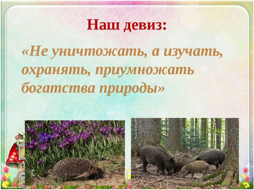 Наш девиз: «Не уничтожать, а изучать, охранять, приумножать богатства природы»
