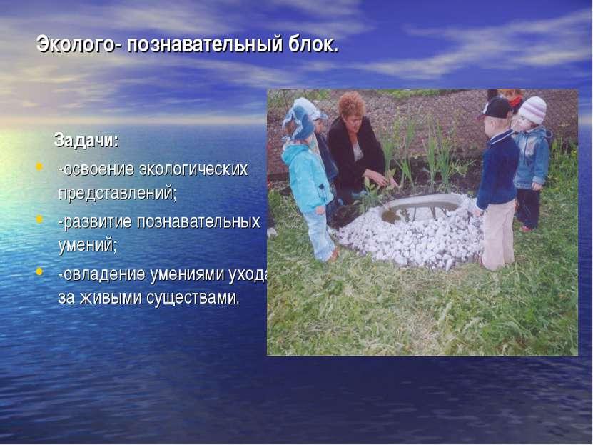 Эколого- познавательный блок. Задачи: -освоение экологических представлений; ...