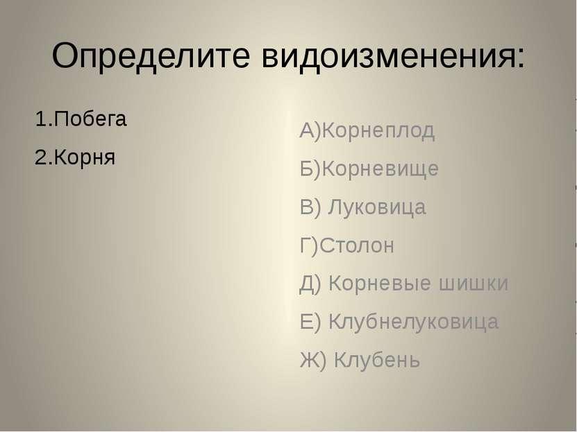 Определите видоизменения: 1.Побега 2.Корня А)Корнеплод Б)Корневище В) Луковиц...