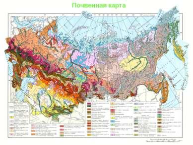 Почвенная карта Почвенная карта